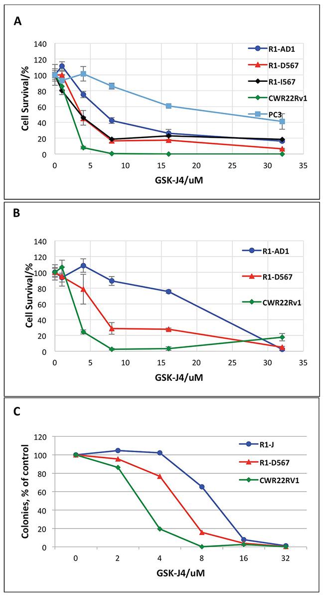 GSK-J4 treatment represses PCa cells proliferation.