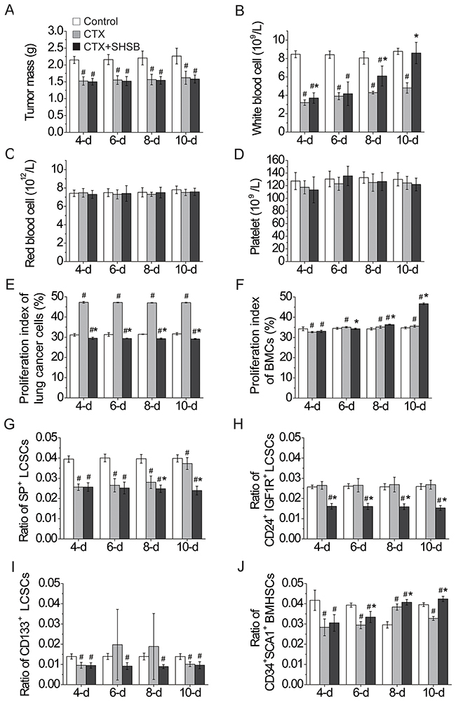 Effects of CTX and SHSB granule on nude mice with lung cancer.