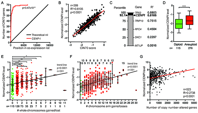 CENPI is a powerful marker for chromosome instability in ER+ breast cancer.