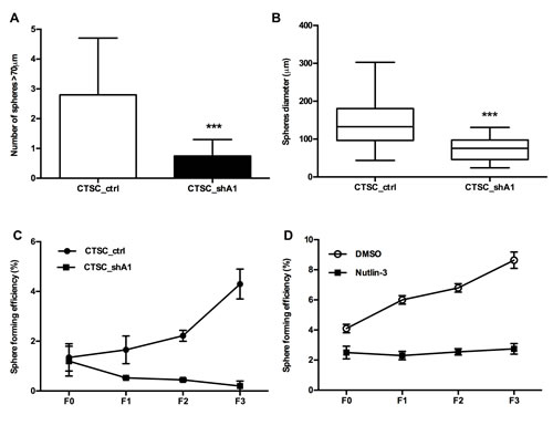 Effects of HMGA1 knockdown on the sphere-formation ability of CTSCs.