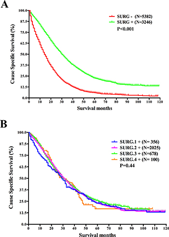 Survival analysis based on the status of surgery of the primary cancer and survival analysis based on surgical resection range in mRC.