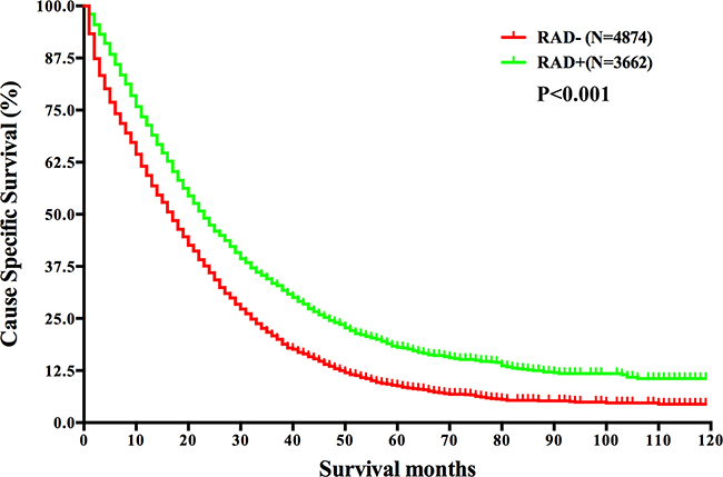 Survival analysis based on the status of radiation in mRC.