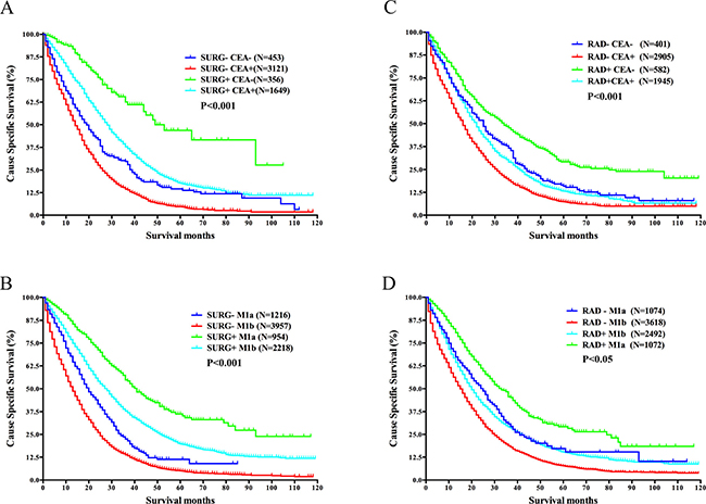 Survival analysis in different subgroups divided by surgery of the primary cancer or radiation and CEA level or M stage in mRC.