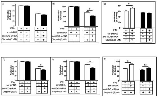 Sensitivity of clonal A549 populations to high dose olaparib (5 µM) before.