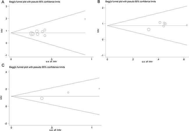 Funnel plot analysis of potential publication bias in the meta-analysis.