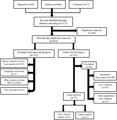 Flow chart of the studies selected for systematic review and meta-analysis.