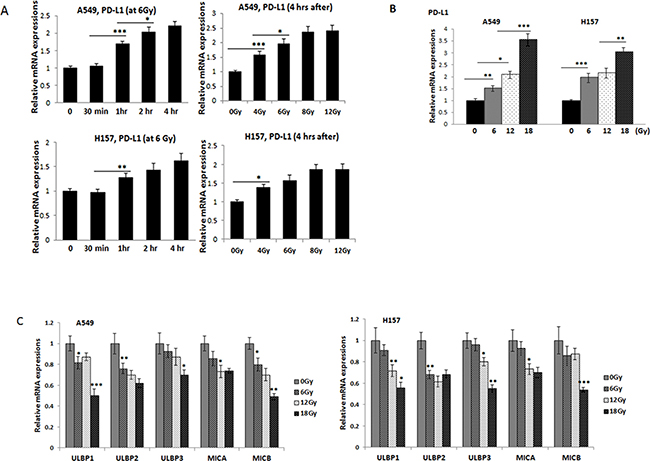 Investigations on the PD-L1 and NKG2D ligand levels in lung cancer cells after radiation treatment.