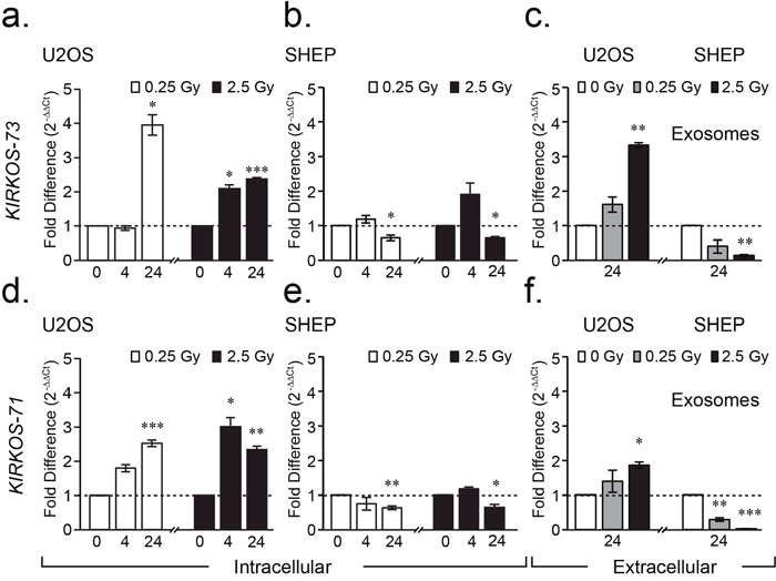 WWOX circRNAs KIRKOS-71 and KIRKOS-73 are irradiation responsive and enriched in exosomes.