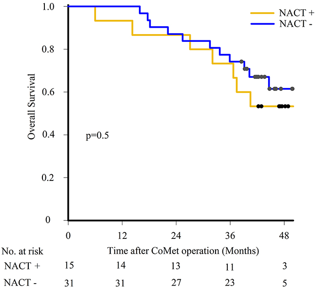 Survival outcome after liver metastasis surgery.