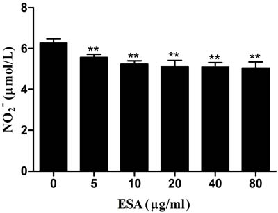 Effect of TgESAs on the NO production of Ana-1 cells.