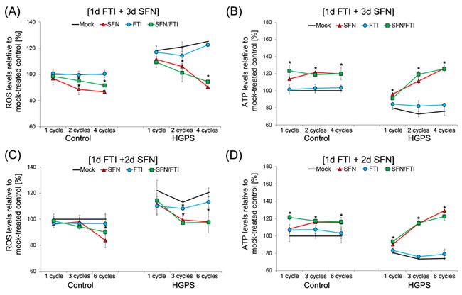 Intermittent treatment cycles with 1 day of FTI followed by 3 days of SFN improve ROS and ATP levels in HGPS cells.