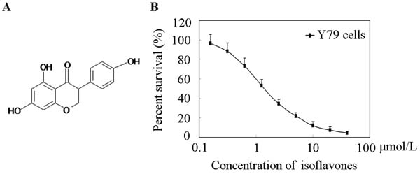 Effects of isoflavones on Y79 Cell proliferation.