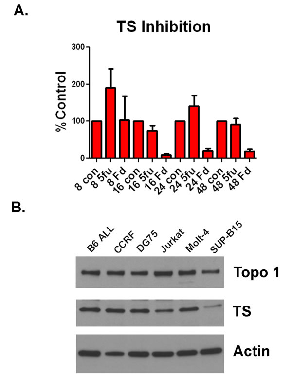 F10 is a potent inhibitor of TS and ALL cells express TS and TopoI.