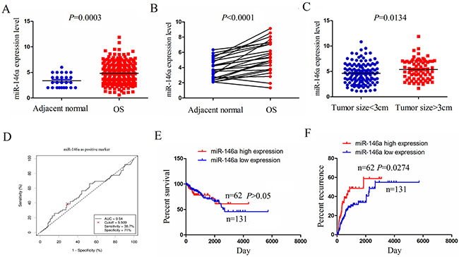 The expression of miR-146a was upregulated in OS tissues and associated with tumor recurrence.