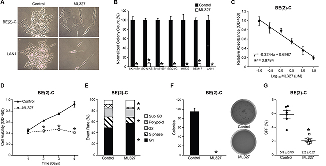 ML327 induces cell death and cell cycle arrest in neuroblastomas.
