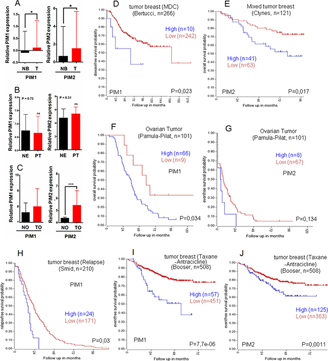 Relative PIM expression in human breast, endometrial and ovary tumors, Role in survival.