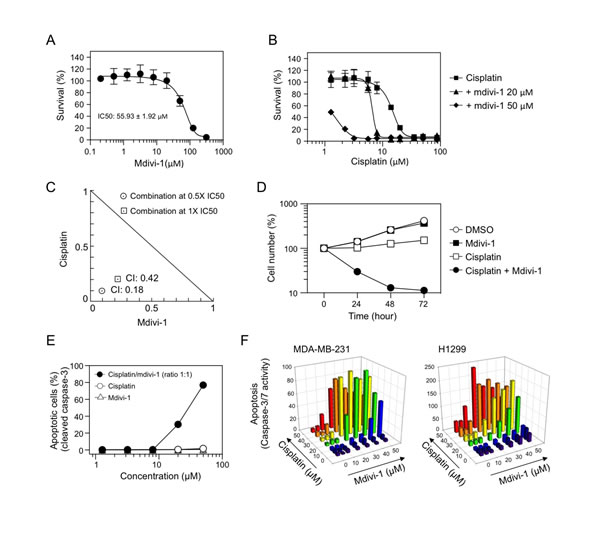 Combination of cisplatin and mdivi-1 produces synergistic pro-apoptotic effect in multidrug resistant tumor cells (A) MDA-MB-231 cells were treated with increasing doses of mdivi-1 for 72 h.