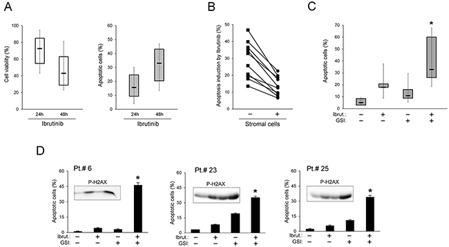 In vitro cytotoxic effect of Ibrutinib+GSI combination in primary B-CLL cell cultures.