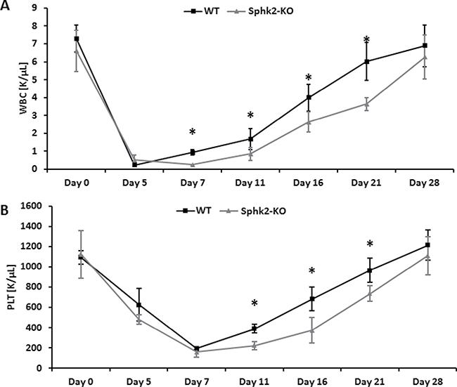 Defects in engraftment of HSPCs in Sphk2-KO mice.