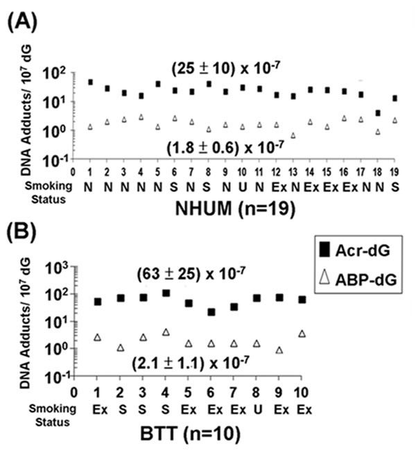 Relative levels of acrolein (Acr)-dG DNA adducts and 4-ABP-DNA adducts in normal human urothelial mucosa (NHUM) and bladder tumor tissue (BTT) samples.