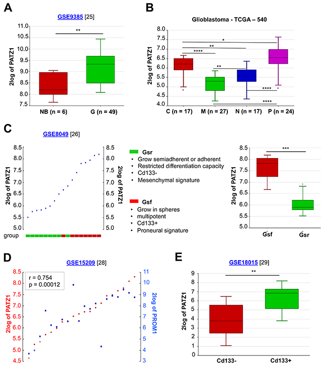 In silico meta-analysis of PATZ1 expression in human GBM tissues and cell lines.