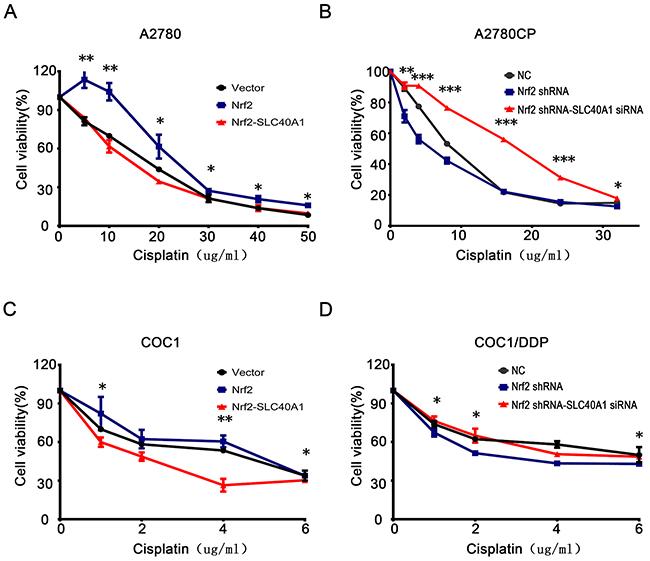 SLC40A1 inverts cisplatin resistance induced by Nrf2.