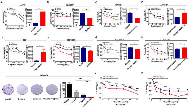 Desferal and brusatol inverts iron overload to sensitize ovarian cancer cells to cisplatin.