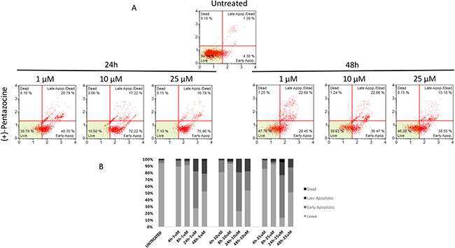 Cytofluorimetric analysis of cell apoptosis following (+)-Pentazocine treatment at different concentrations and time points.