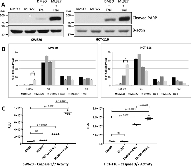 EMT reversal with ML327 sensitizes carcinoma cells to the apoptosis-inducing ligand TRAIL.