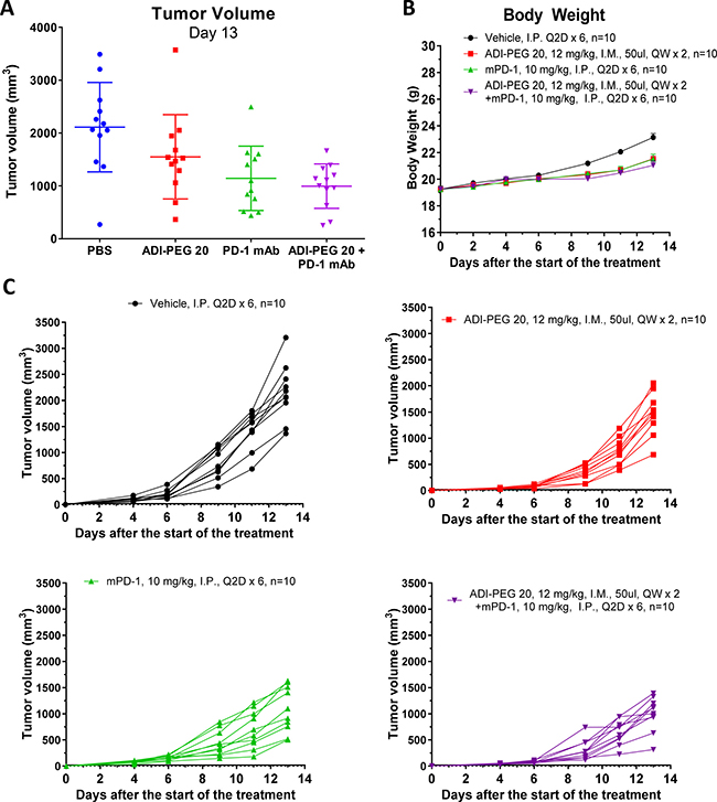 ADI-PEG 20 reduces B16-F10 tumor growth as a single agent and in combination with anti-mPD-1 mAb.