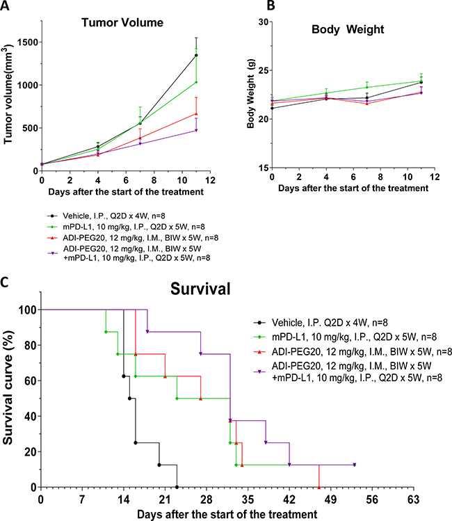 ADI-PEG 20 reduces CT26 tumor growth and prolongs survival as a single agent and in combination with anti-mPD-L1 mAb.
