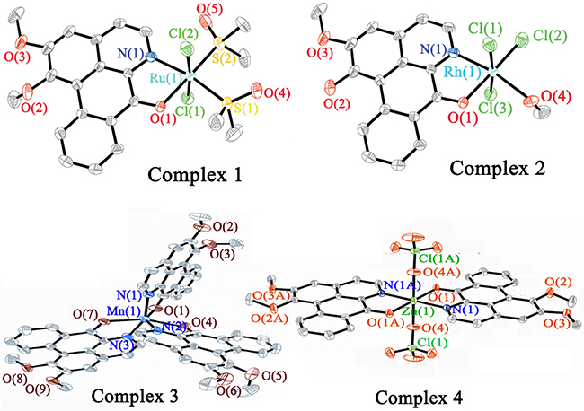 Crystal structures of complexes 1–4.