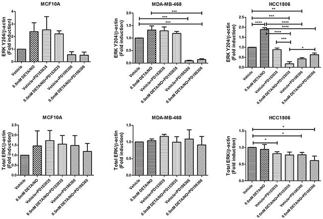 Densitometry analysis of ERK phosphorylation in response to DETA/NO.