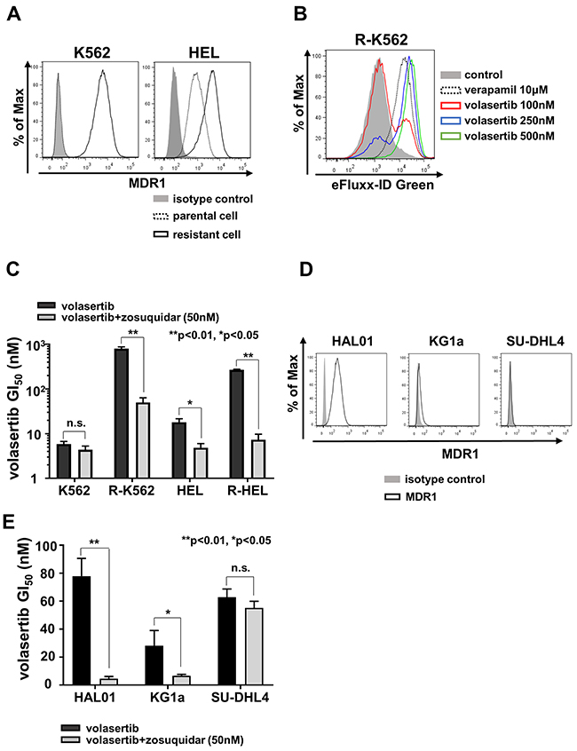 MDR1 expression was associated with volasertib-resistance.