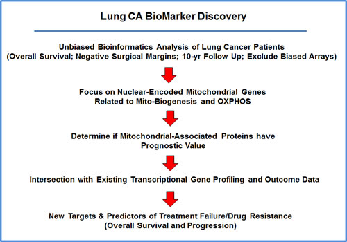 Diagram showing our bio-informatics approach to lung cancer biomarker discovery.