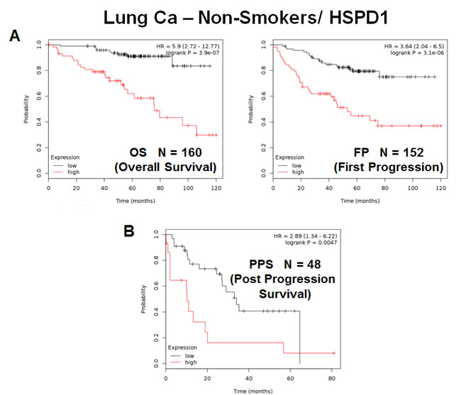 The mitochondrial chaperone, HSPD1, predicts poor clinical outcome and tumor progression in lung cancer patients: Non-Smokers.