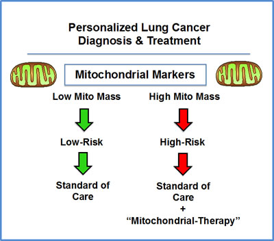 NSC lung cancer: mitochondrial-based diagnostics for personalized cancer therapy.
