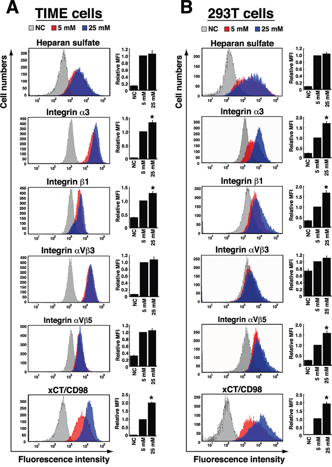Effects of high glucose on the expression of cellular receptors for KSHV binding and entry.