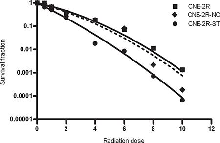 The effect of STAT1 inhibition on radiosensitivity.