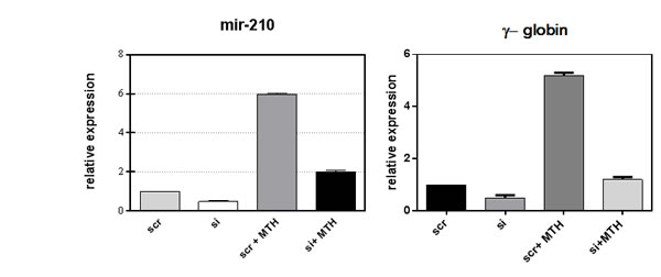 Fig 4: Loss of function study of miR-210.