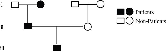 Family pedigree of the atopic dermatitis.