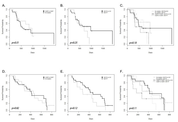 Kaplan–Meier survival plot and the log rank test results for overall survival (A-C) and progression-free survival (D-F) in patients with and without the