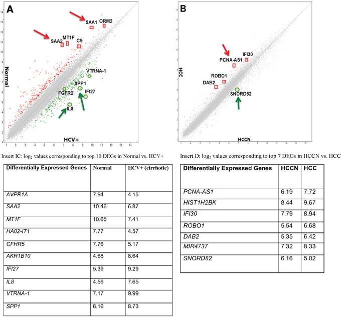 Global gene expression profiling data of hepatitis C tissue samples.