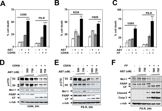 Dinaciclib or a CDK9-specific inhibitor potentiate BH3 mimetics lethality in MM cells in association with Pol II inhibition and Mcl-1 downregulation.