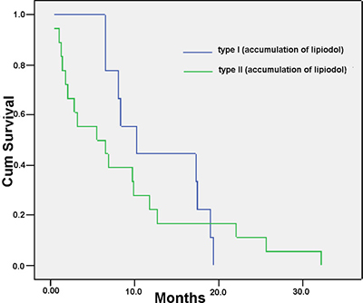 Overall survival according to different degrees of accumulation of Lipiodol in the PVTT