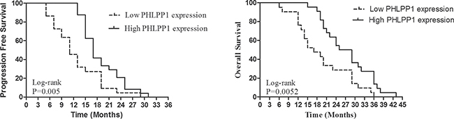 Kaplan-Meier PFS and OS curves of patients with high and low expression of PHLPP1.