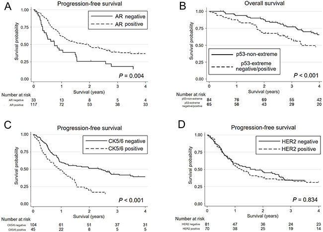 Kaplan-Meier survival curves of patients with salivary duct carcinoma.