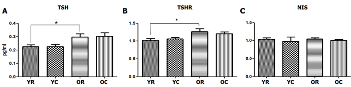 Changes in the serum TSH and TSHR and NIS levels of the thyroid tissues after cold exposure in young and old rats.