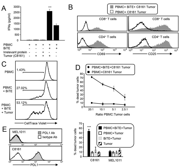 CD3xPDL1 BiTE activates T cells that are cytotoxic for PDL1