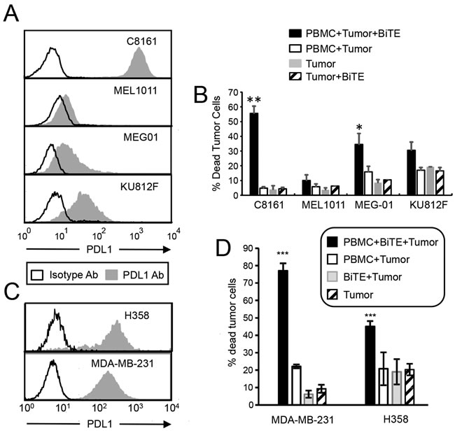 CD3xPDL1 BiTE activates T cells and is cytotoxic for PDL1